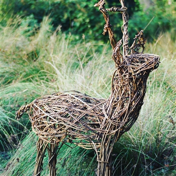 Willow Deer